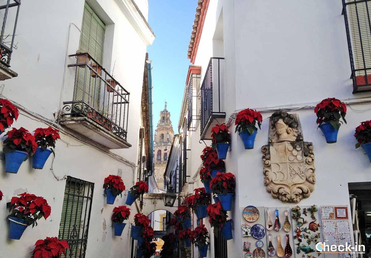 Luoghi suggestivi di Cordoba (Andalusia): calle de las Flores