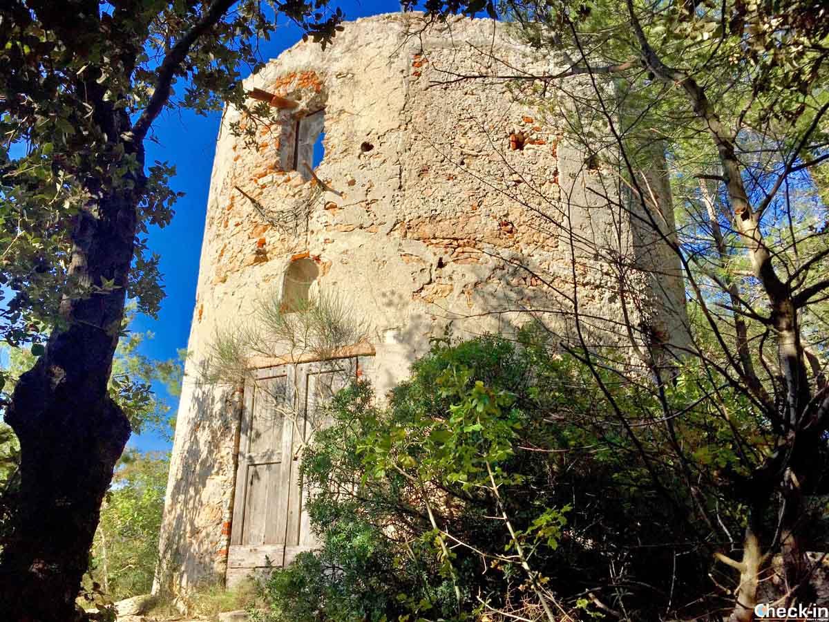 Resti del mulino fenicio sulle alture di Verezzi (Liguria di ponente)