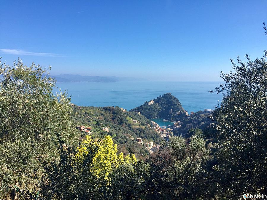 Escursione nel Parco di Portofino