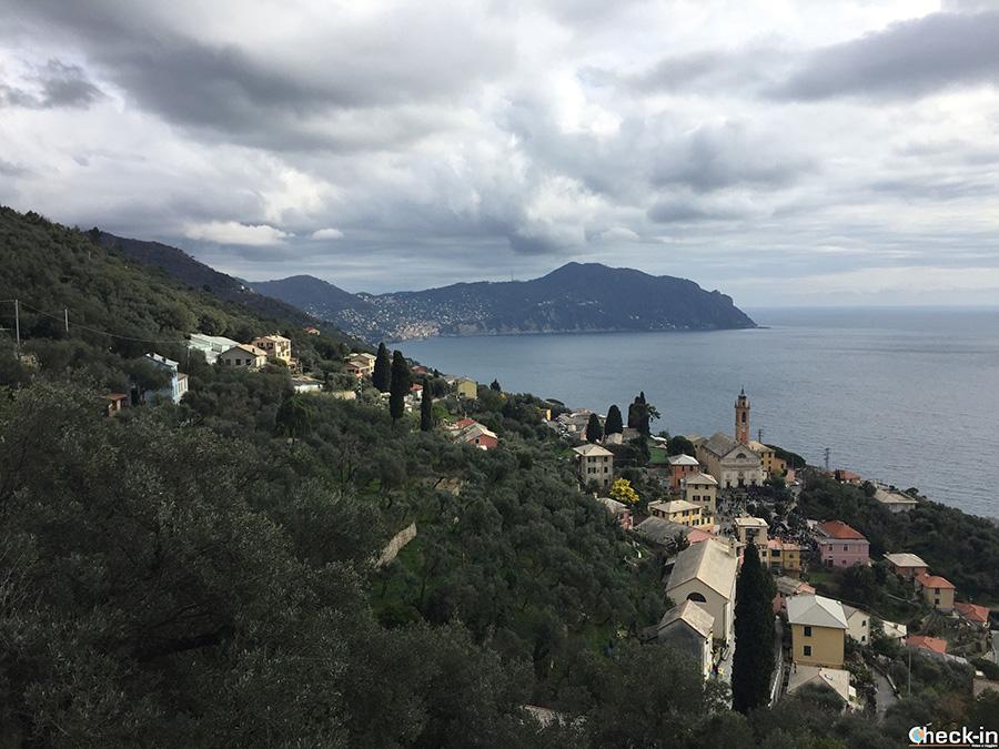 Dalla Chiesa di S. Croce a Pieve Alta (Liguria di levante)