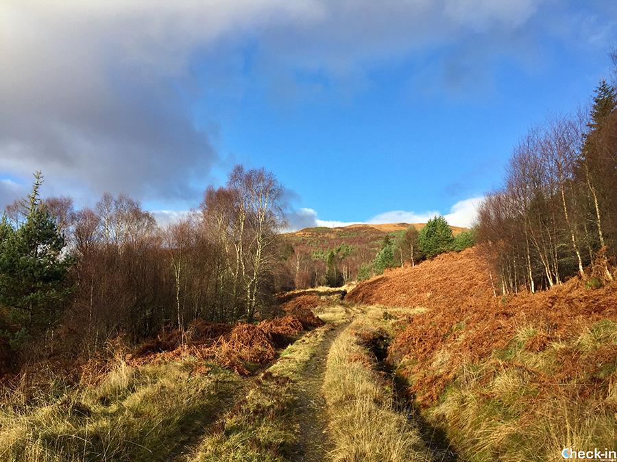 Walks across Loch Katrine area