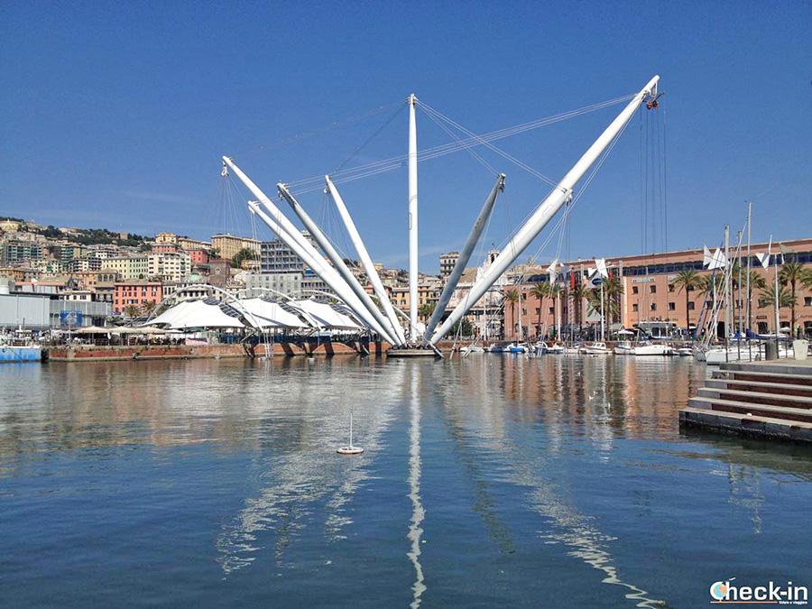 Luoghi da non perdere a Genova - Porto Antico e l'Acquario