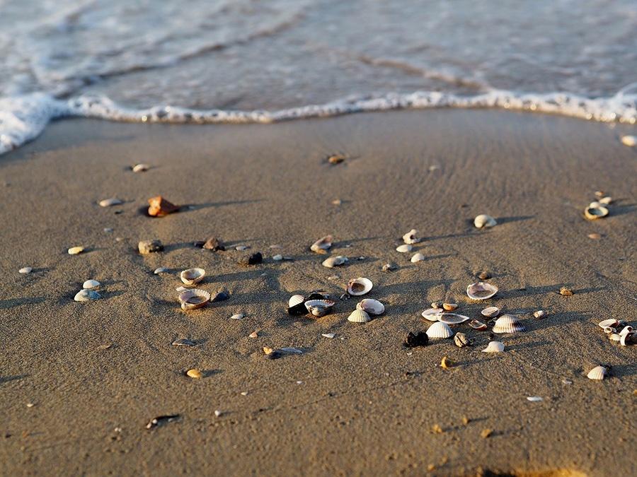 Passeggiata lungo la spiaggia di Bibione - Vacanza in Italia