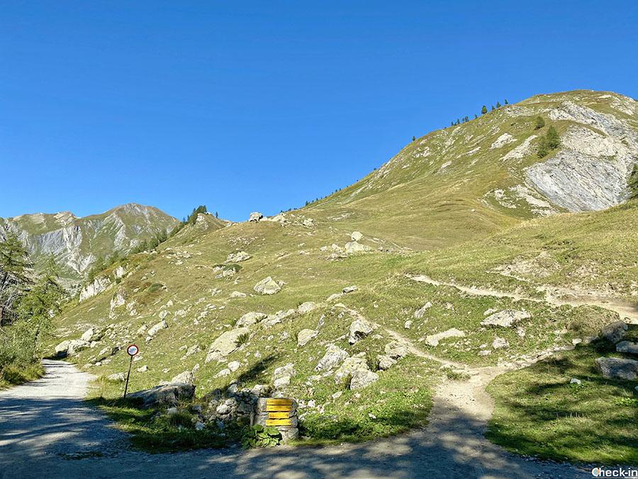 Itinerario da Arp Nouva al Rifugio Elena - Val Ferret, Courmayeur