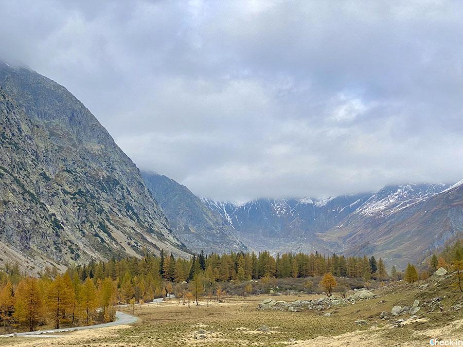 Visitare la Valle d'Aosta in autunno - Foliage in Val Ferret (vicino a Courmayeur)