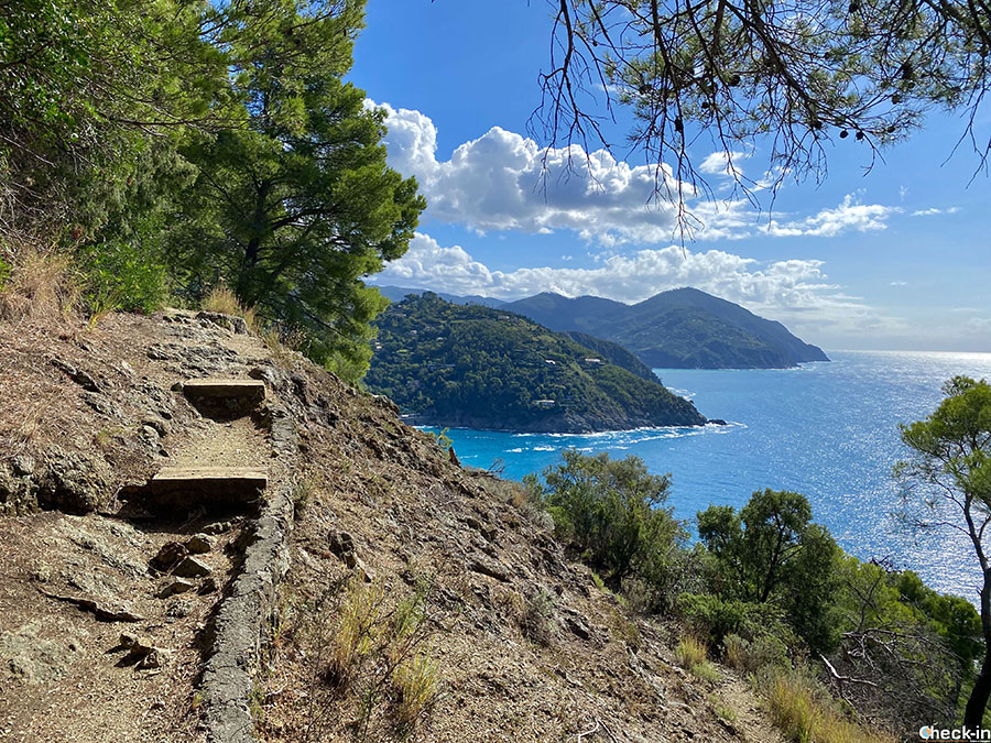 """Camminate semplici da fare in Liguria: verso il """"Salto della lepre"""" a Bonassola"""