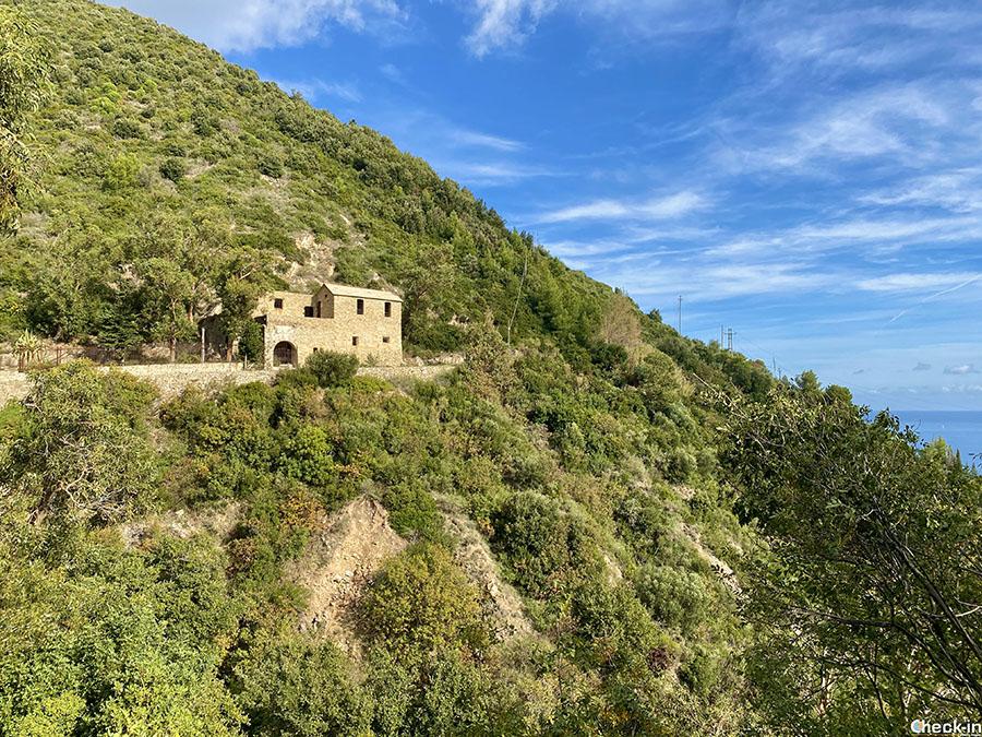 Cosa vedere lungo la passeggiata romana tra Alassio e Albenga: Chiesa di S. Anna ai monti