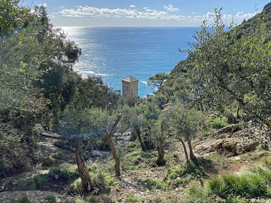 Come raggiungere l'Abbazia di San Fruttuoso a piedi da Camogli e/o Portofino - Liguria di levante