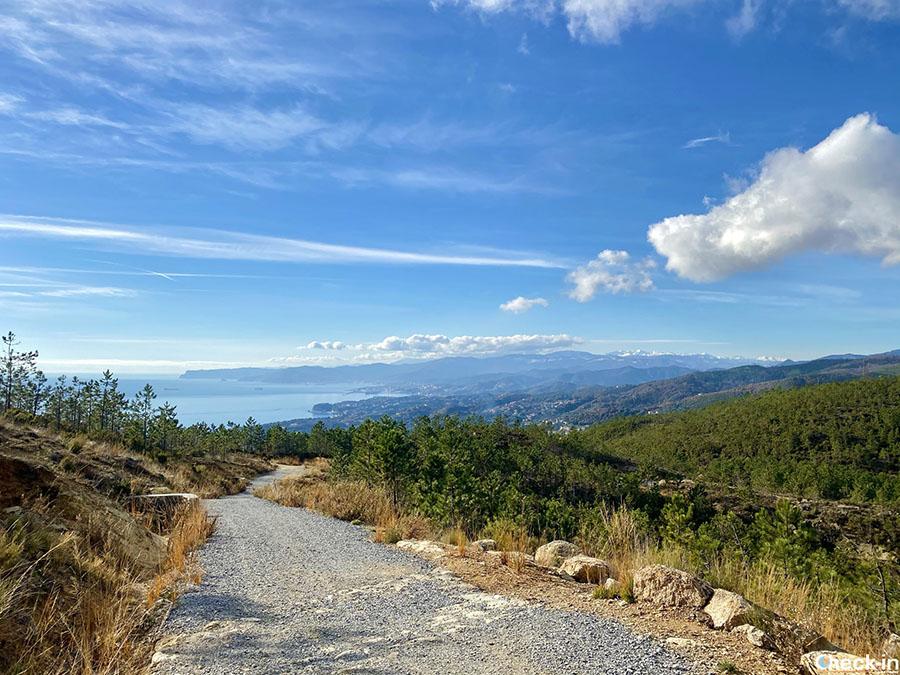 Trekking in Liguria: escursione al Monte Grosso dal centro di Varazze