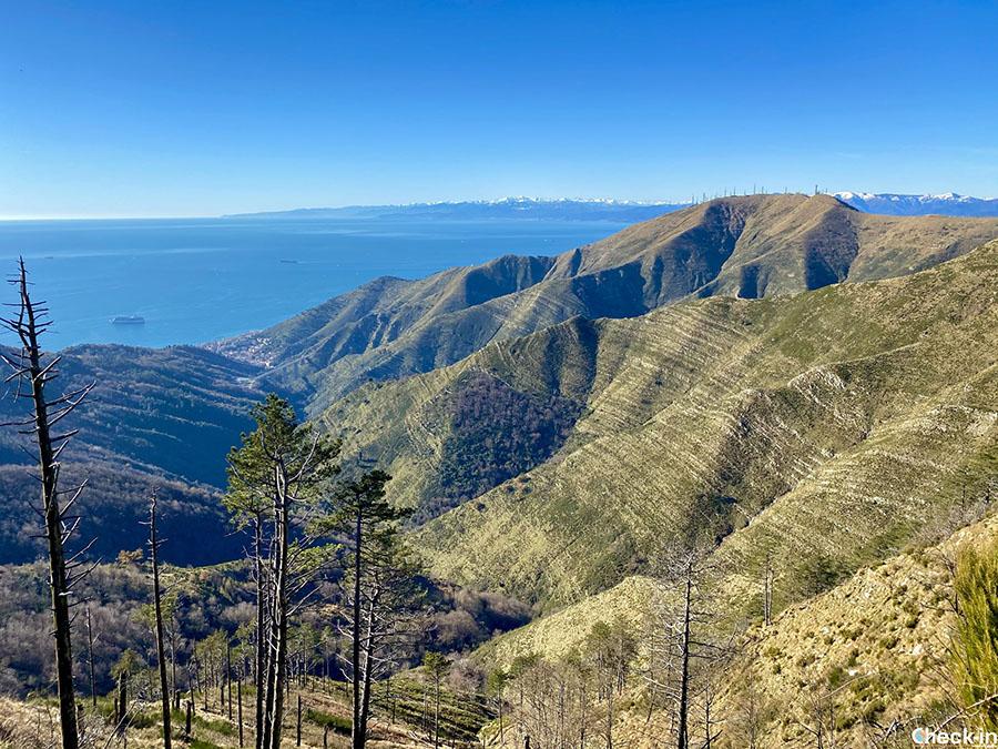 Trekking a Genova: sentiero per raggiungere i monti Cordona e Fasce da Nervi