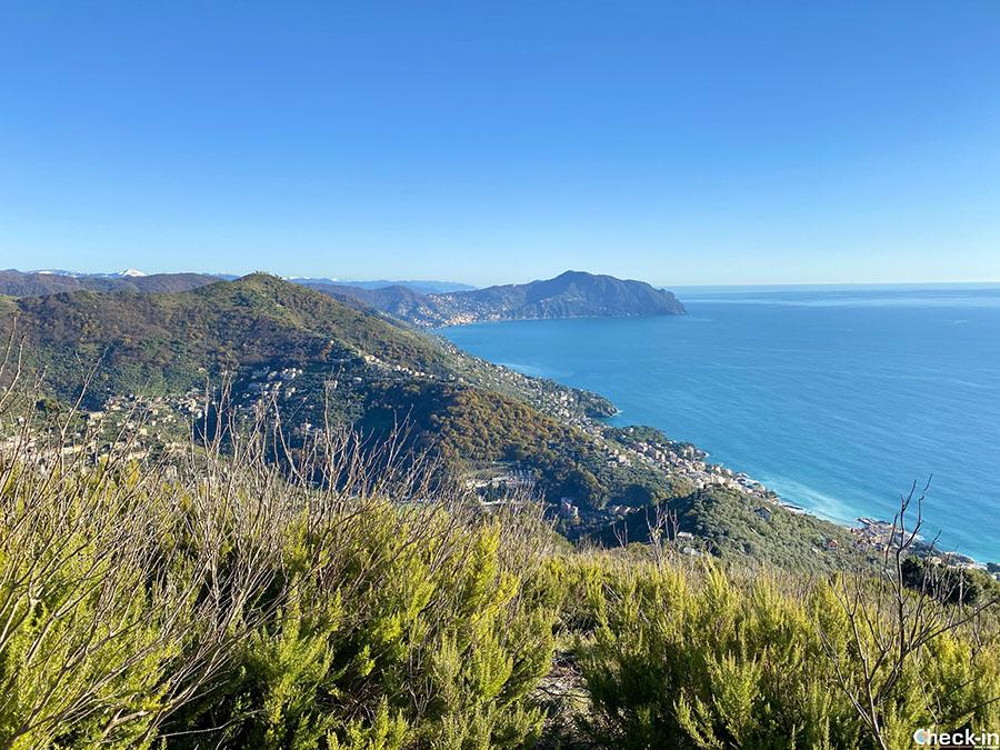Camminate semplici da fare a Genova: da Nervi al monte Giugo