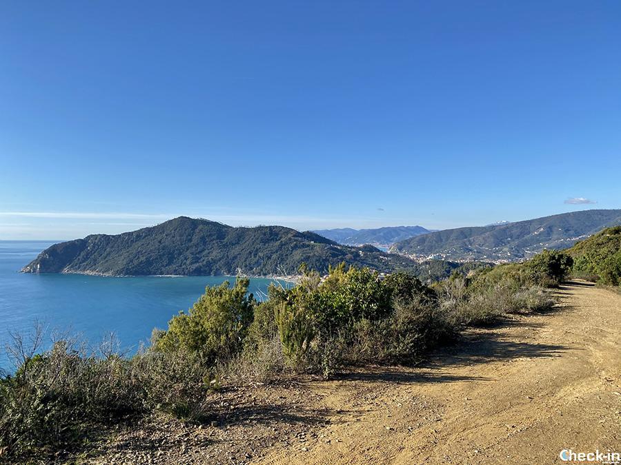 Informazioni sul sentiero tra Riva Trigoso e Punta Baffe - Trekking in Liguria