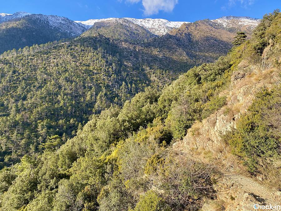 Trekking nel Parco del Beigua al Lago della Tina (Arenzano)