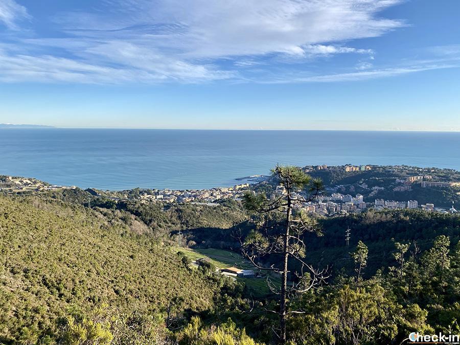 Area pic-nic del Curlo sopra Arenzano - Riviera ligure di ponente