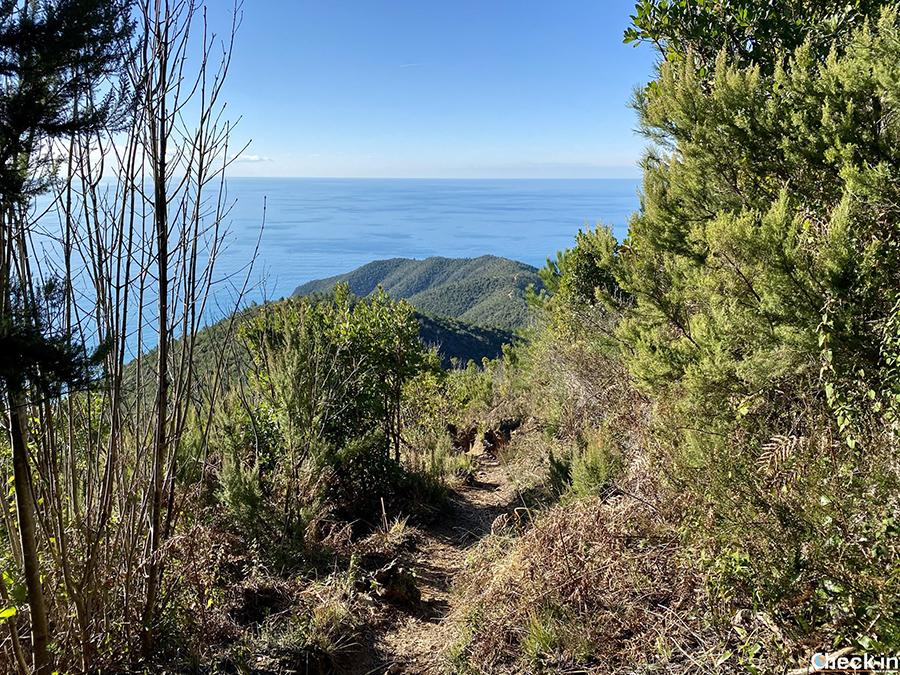 Escursione nel levante ligure: trekking sul monte Moneglia (GE)