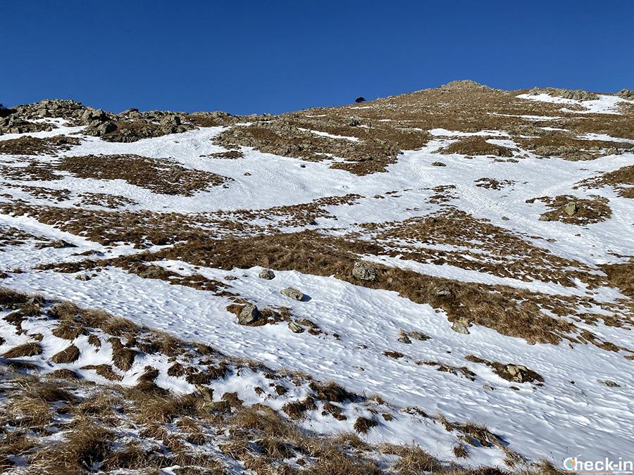 Trekking in Liguria in inverno - Ascesa al monte Reixa dal Passo Gava (Arenzano)