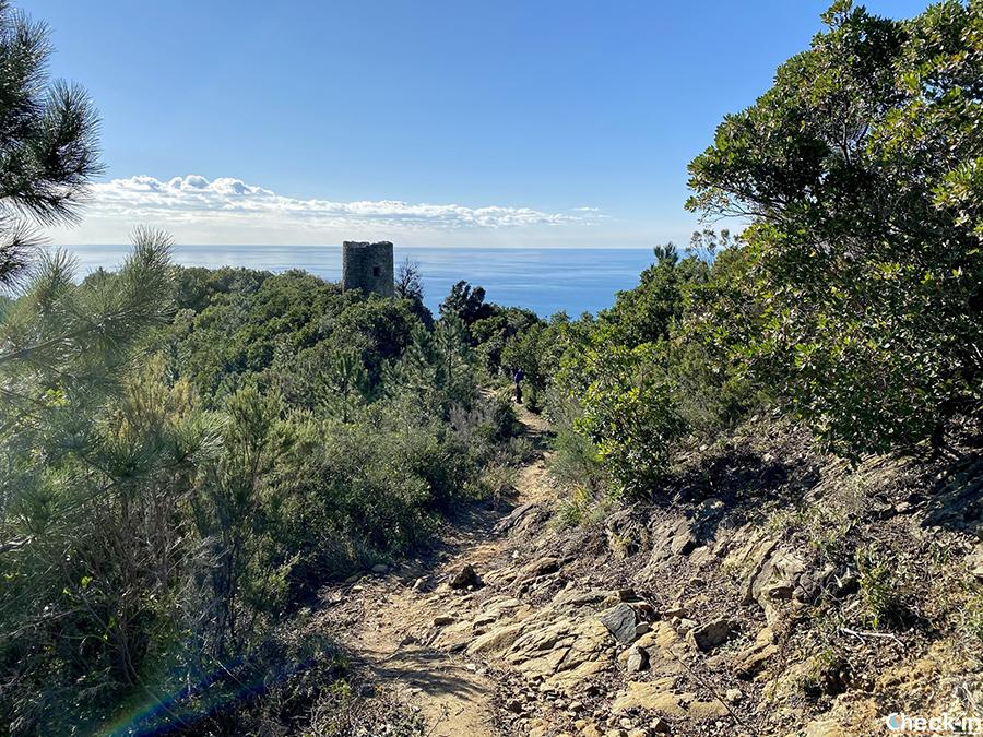 Come raggiungere Punta Baffe da Riva Trigoso e Moneglia - Riviera ligure di levante
