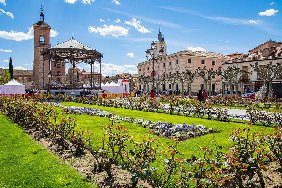 Ciudades para ver en la provincia de Madrid: tour de Alcalá de Henares