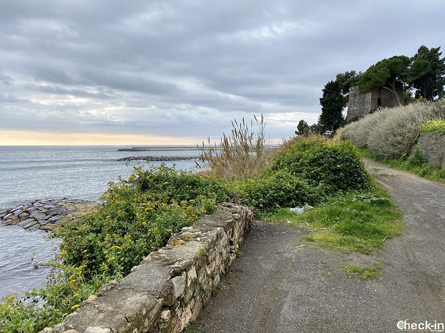 Cosa vedere vicino a S. Stefano al Mare (IM): Torre degli Aregai - Liguria di ponente
