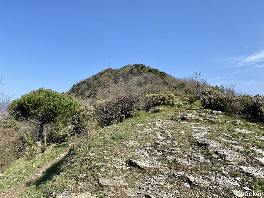 Crocevia al Pian di Cren tra Recco e Ruta di Camogli (Liguria di levante)