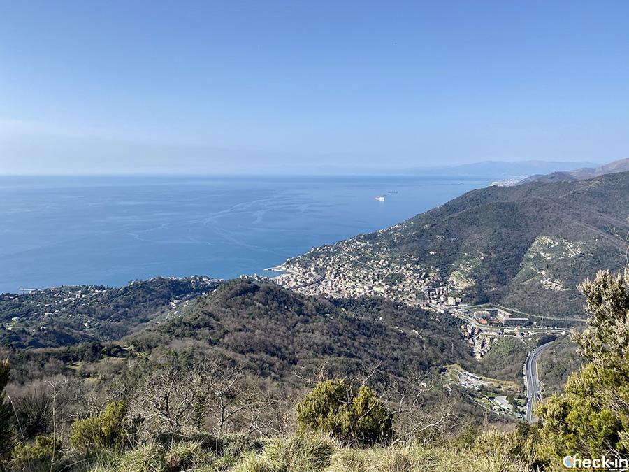 Vista panoramica su Recco verso il Santuario di NS di Caravaggio (Liguria)