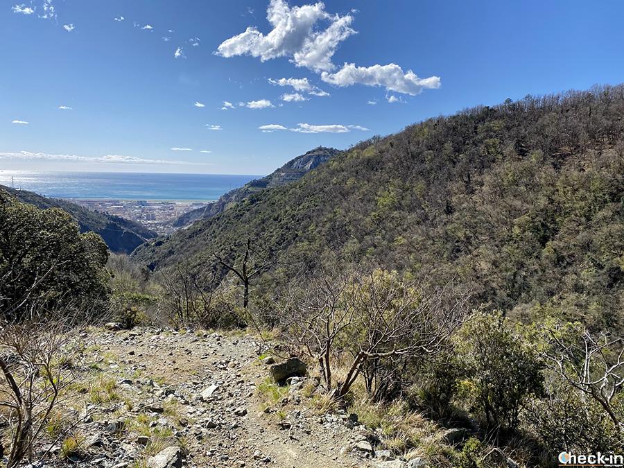 Trekking lungo l'anello di Cassinelle e M.te Teiolo da Genova Borzoli