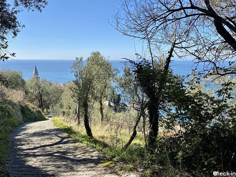 Trekking tra Moneglia e Deiva Marina - Ascesa al Monte Incisa da Lemeglio