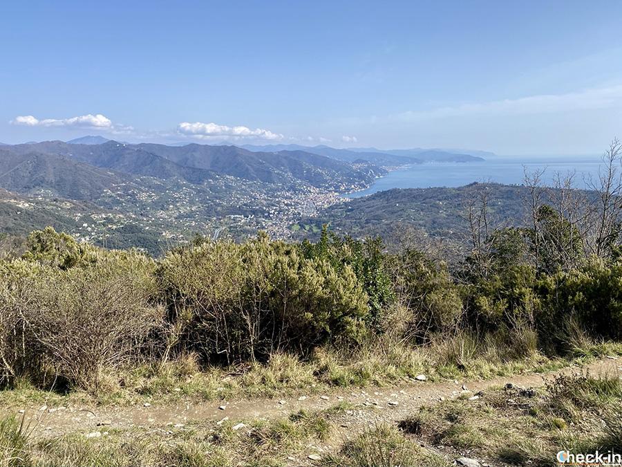 Panorama su Rapallo dal sentiero verso Ruta di Camogli - Riviera ligure di levante
