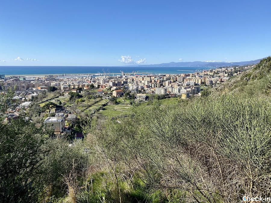 Gita fuori porta sulle alture di Genova: anello di Cassinelle e M.te Teiolo