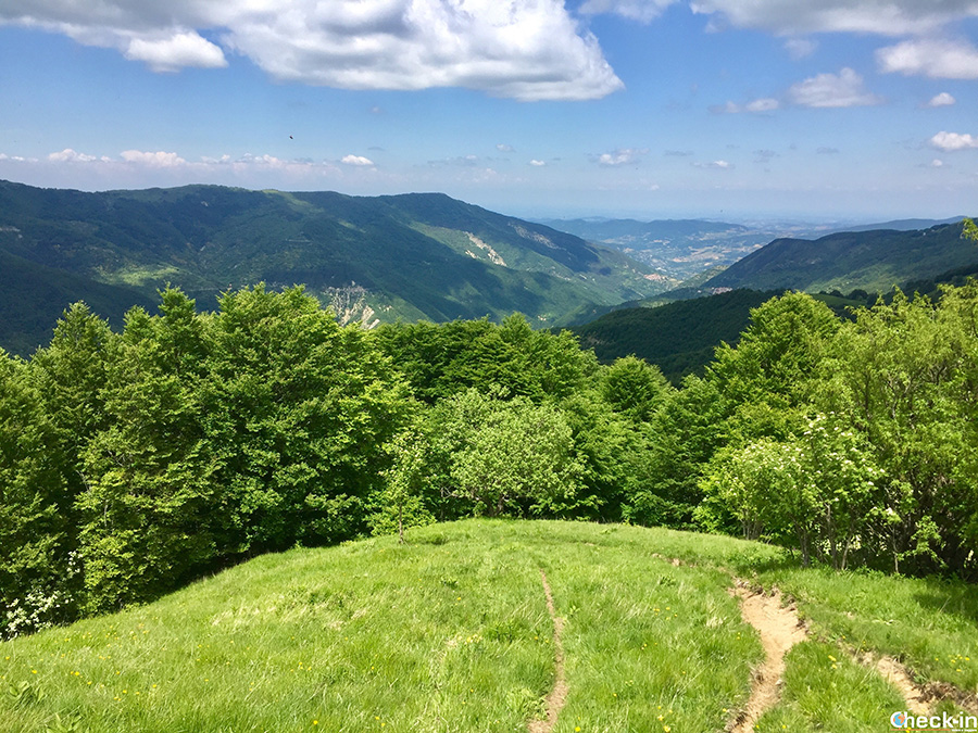 Trekking sull'Appenino Ligure, al confine tra Lombardia e Emilia-Romagna: Sentiero 101z per il monte Lesima
