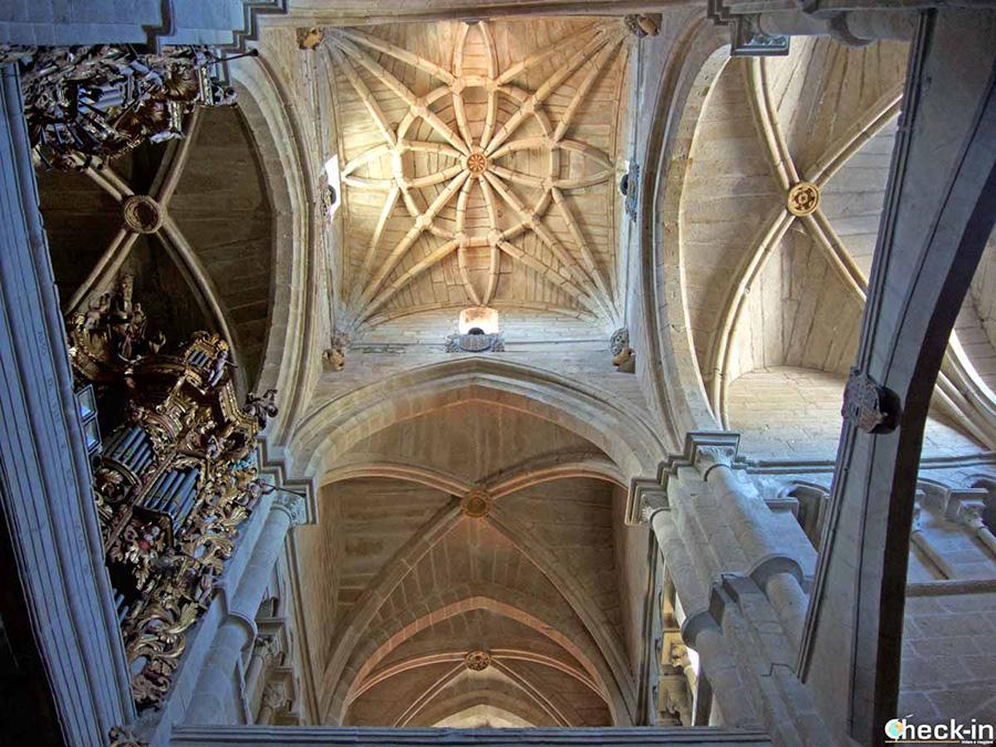 Visita Catedral de S. María de Tui - Galicia, norte de España
