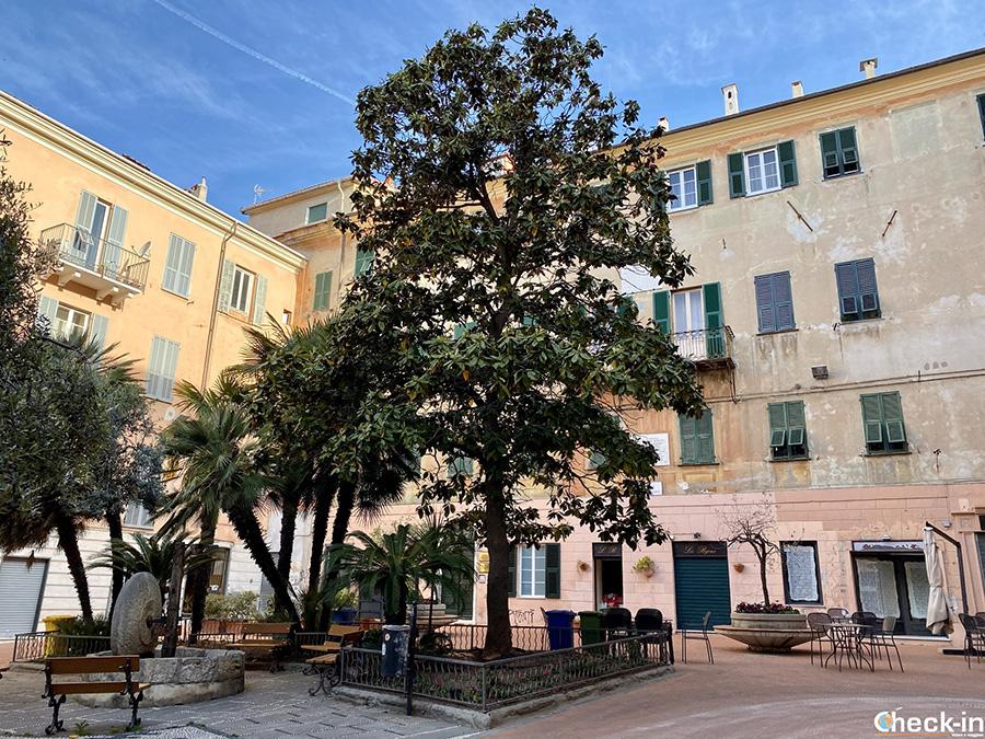 Cosa vedere nel centro storico di Oneglia: Piazza G. Bianchi