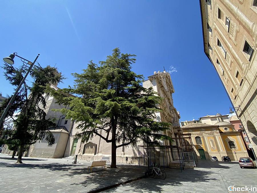 """Perché Savona è la """"Città dei Papi""""? Visita della Cattedrale e della Cappella SIstina"""