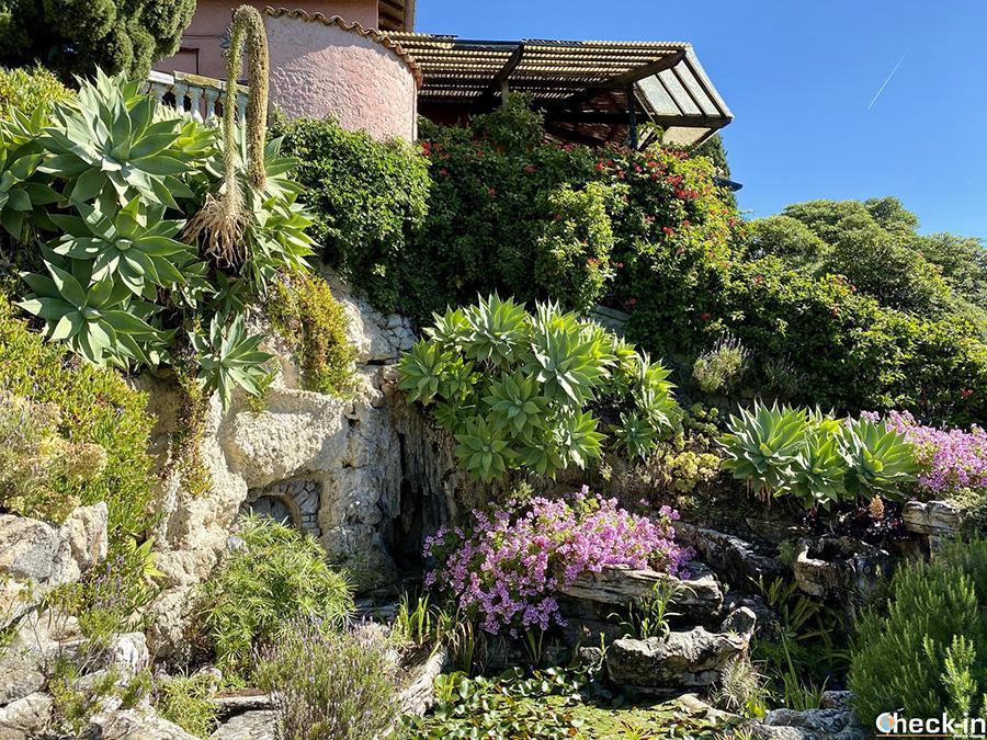 Piante grasse succulente e fioriture nei Giardini Hanbury di Ventimiglia, a pochi Km dal confine con la Francia