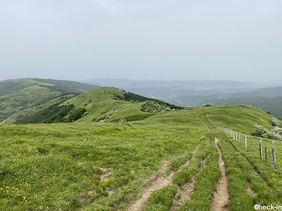 Sentiero verso il M.te Giarolo dalla cima del Monte Cosfrone (Appennino Ligure)