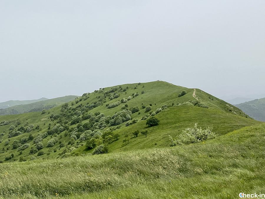 Vette dei Monti Lesima, Chiappo e Ebro - Appennino Ligure, zona delle 4 province