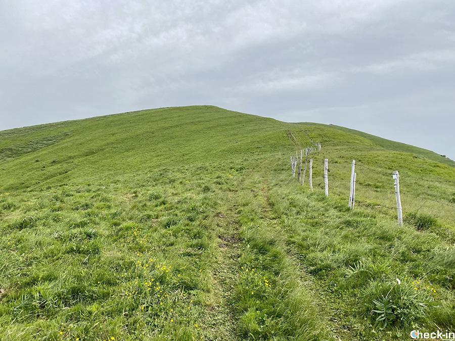 Sentiero per salire sul Monte Chiappo, a 1.700 m d'altezza - Appennino ligure, nord Italia