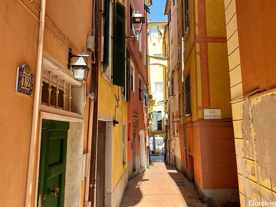 Via Andrea Doria (Carpaneta) - Sentiero da Lerici a Serra e Tellaro (Liguria)