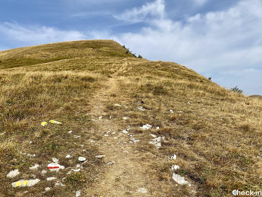 Escursione sull'Appennino Ligure: arrivo sul Monte Carmo (1.462 m)