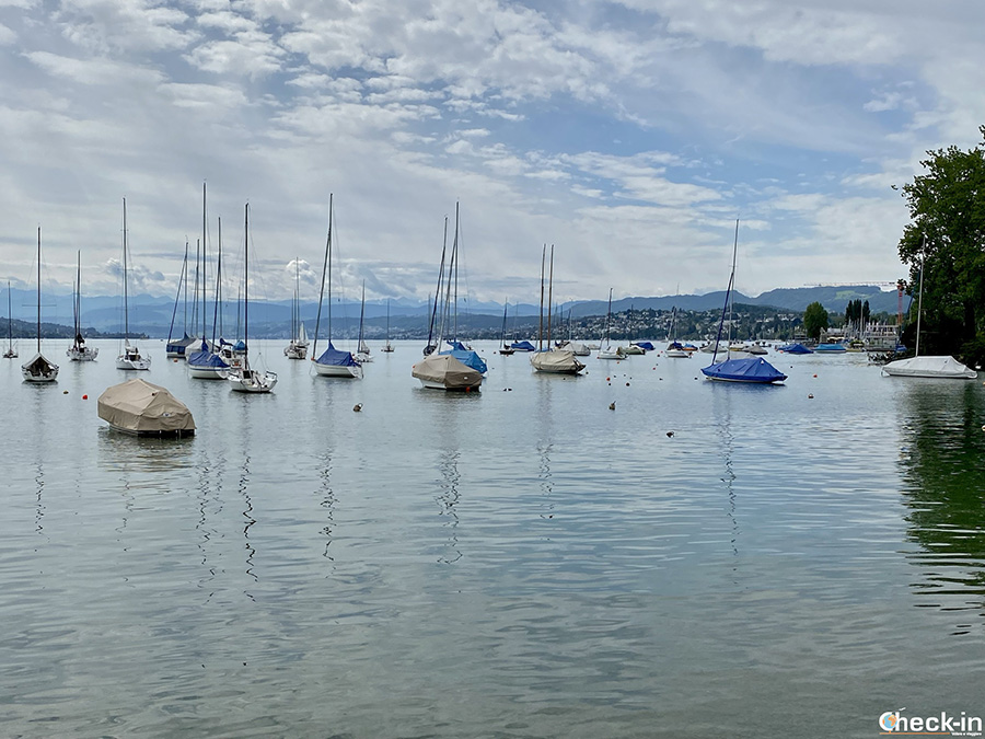 Attività da fare nei dintorni del centro di Zurigo: giro del lago a piedi o in barca