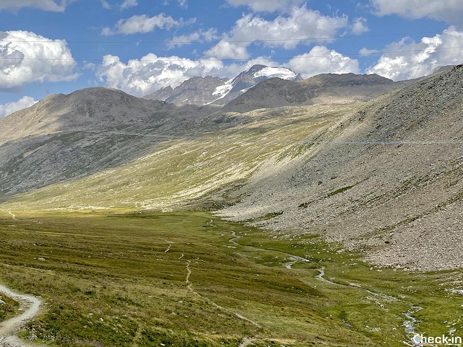 Vetta del Gran Paradiso (4.061 m) dal Rifugio Savoia - Valle d'Aosta