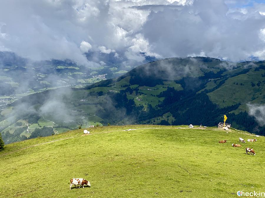 Vista panoramica dalla cima del M.te Hohe Salve - Söll, Wilder Kaiser