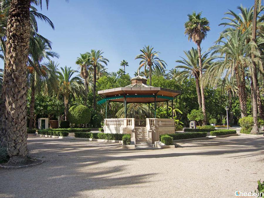 Visitas guiadas del Palmeral de Elche desde Alicante - Comunidad Valenciana, España del sur