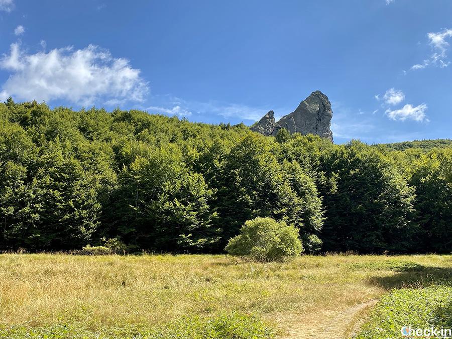 Trekking nel levante ligure: da Rocca d'Aveto al Prato Lamissora-Dente della Cipolla