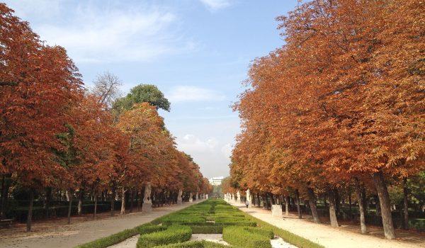 Il parco del Retiro di Madrid durante il foliage autunnale