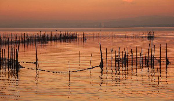 El lago de la Albufera de Valencia al atardecer - Mirador del Pujol