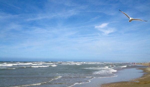 Katwijk Aan Zee, scorcio dell'oceano